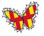 Ripped Torn Metal Butterfly Design With Northumberland County Flag Motif External Vinyl Car Sticker 125x90mm
